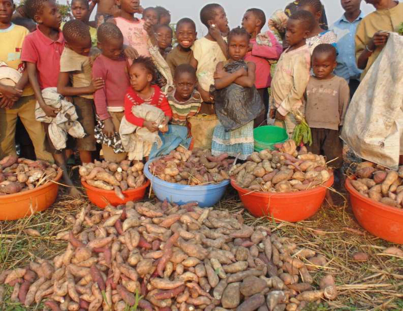 Kids in front of baskets of sweet potatoes